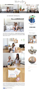 blog-blueberry-home
